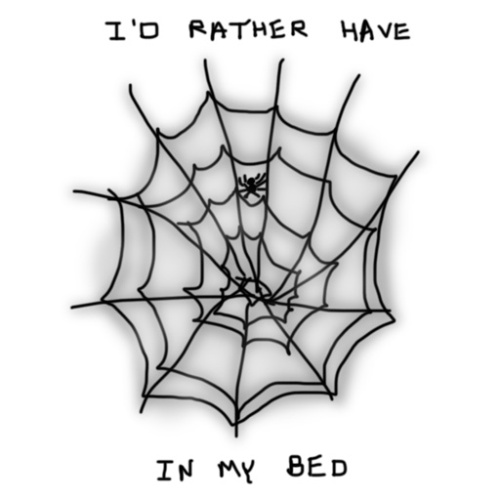 Spiders In My Bed